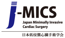 Japan MICS Summit